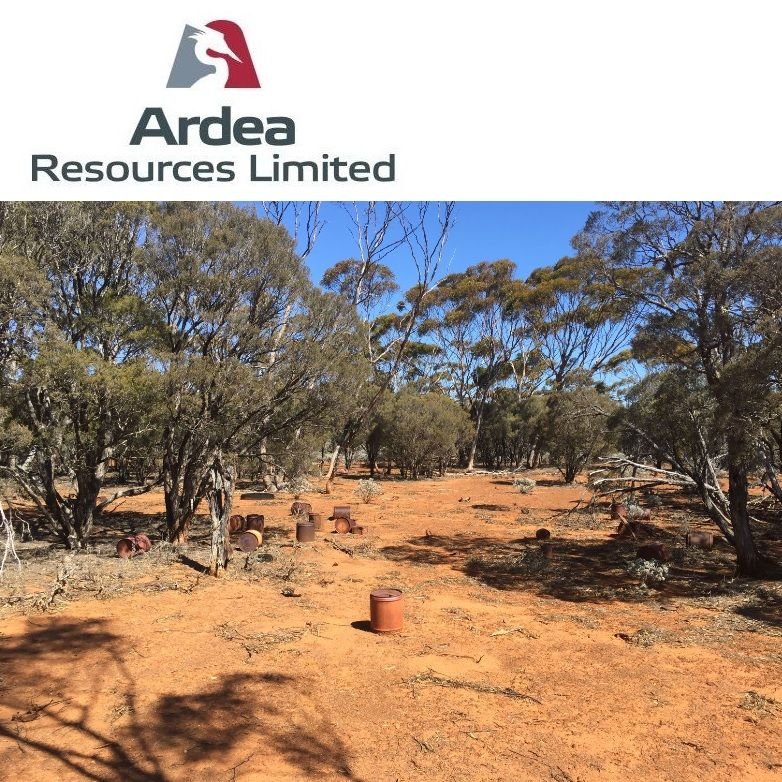 Extensive Gold Anomalism at Goongarrie Nickel Cobalt Project