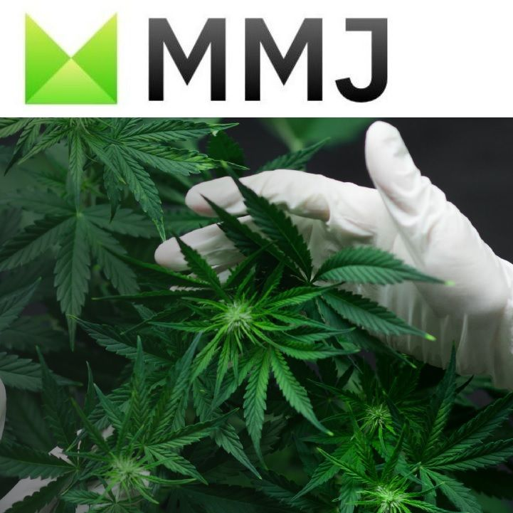 MMJ Group Invests CAD$6m in WeedMD Inc.